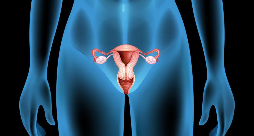 cancer de l'utérus, dépistage, frottis, vaccination, Hpv, 123RF©