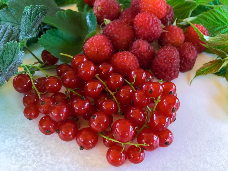 Fruits d'été 123RF©